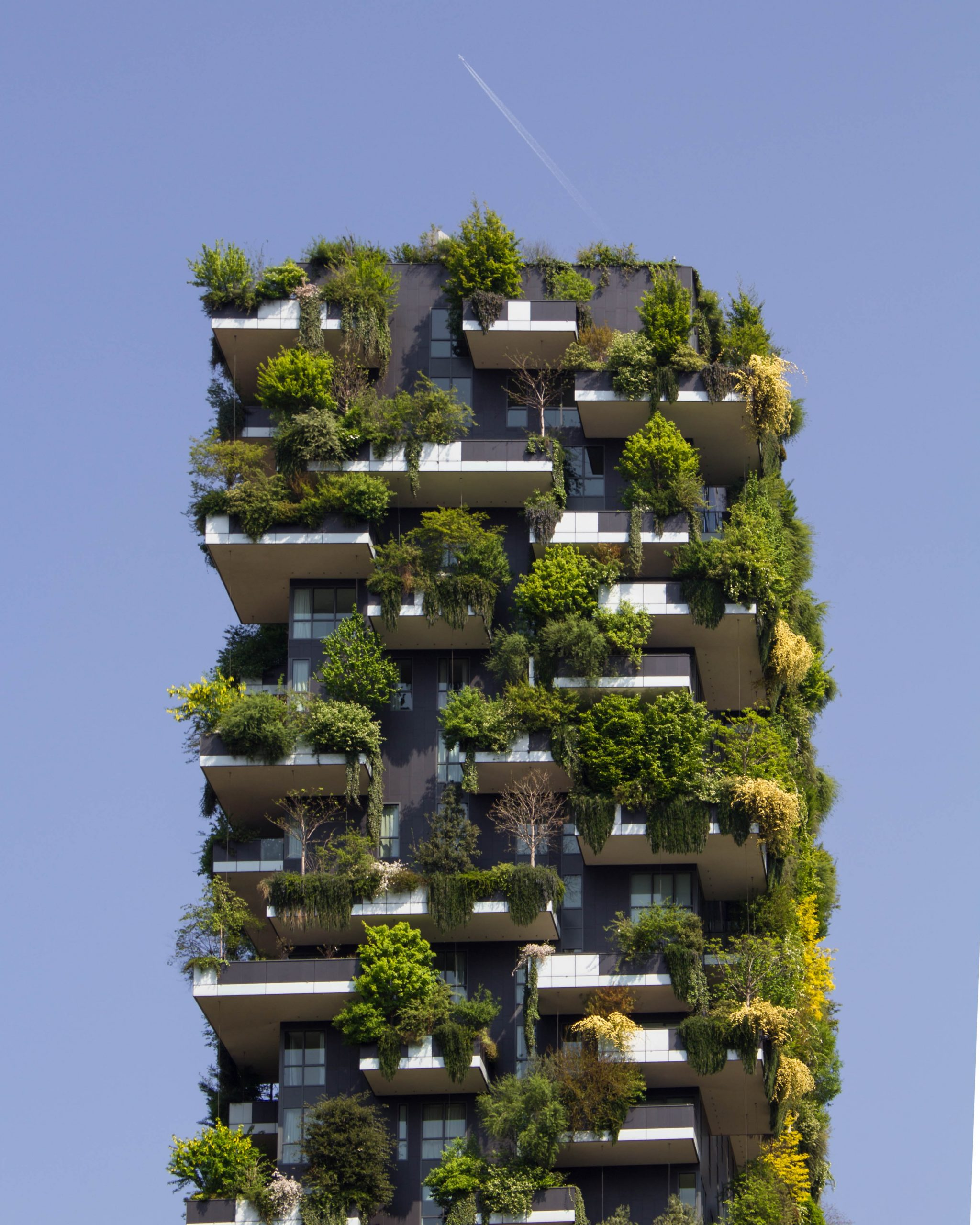 building with green living walls