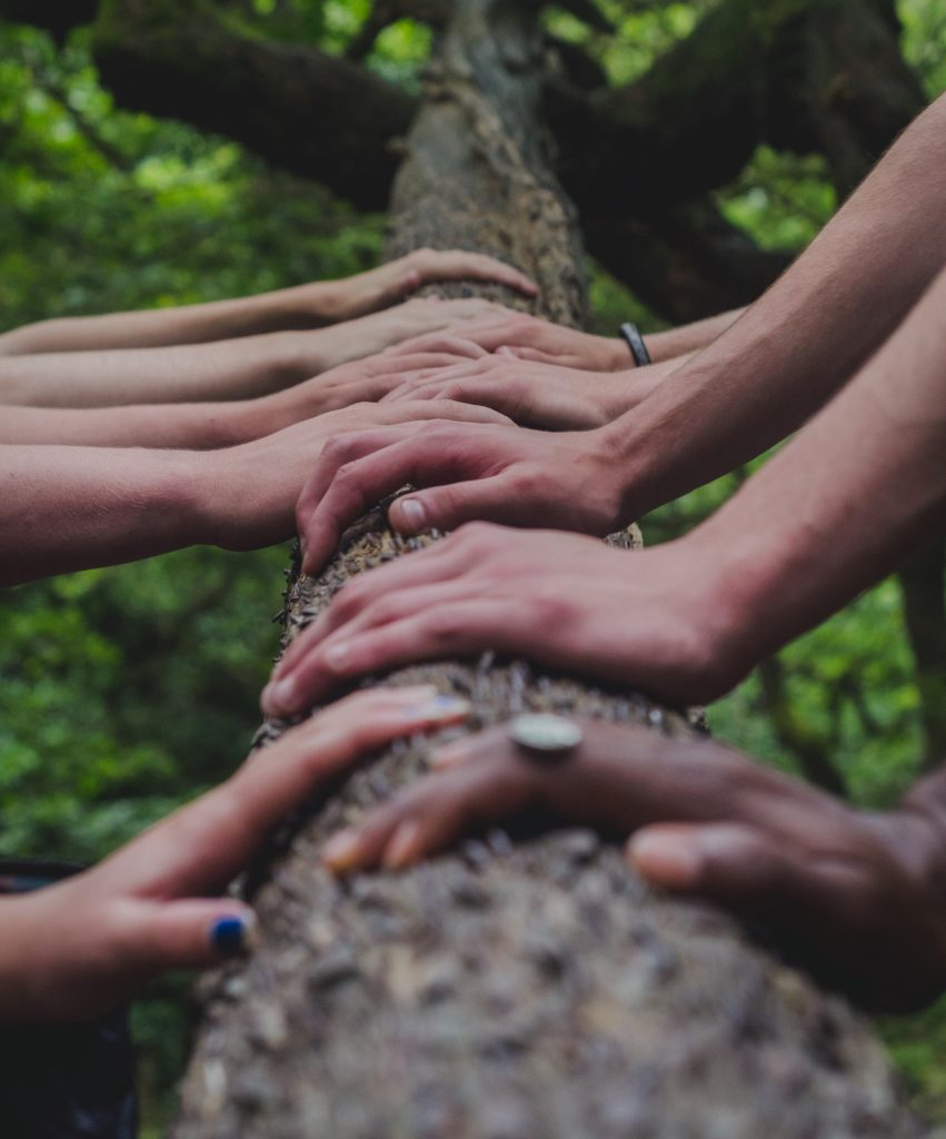 Hands next to each other signalling support on the trunk of a tree